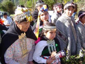 mapuche-conadi